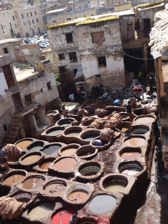Fez leather tanning