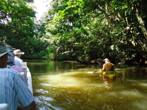 Kyaking the backwaters