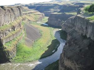 canyon Snake River