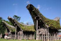Tanatoraja houses